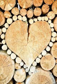 """El amor es un eterno """"insatisfecho"""". Filosofía del """"amor"""""""
